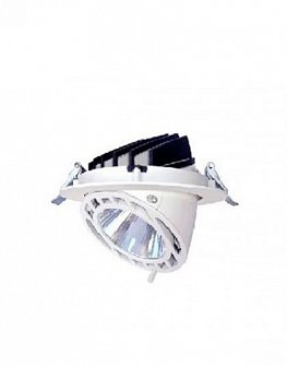 LED downlight VEWI 1010 (white, silver, black) 26W